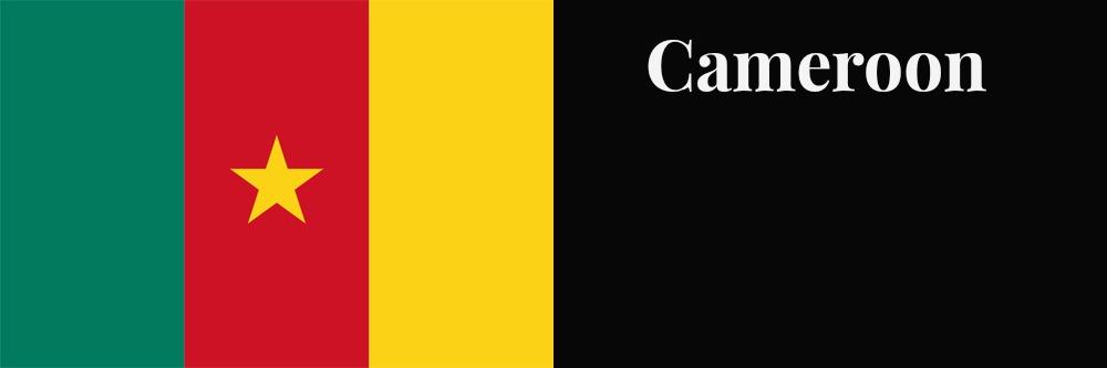 Cameroon flag banner1