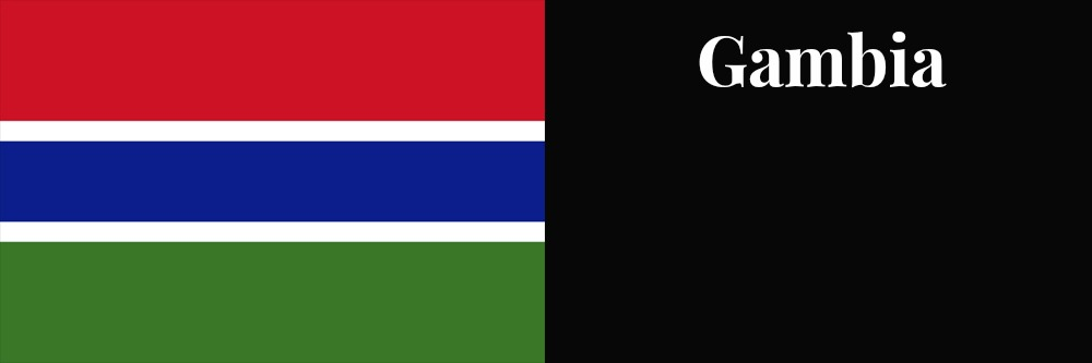 Gambia flag banner1