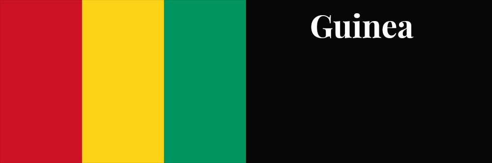 Guinea flag banner1