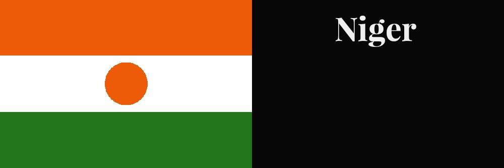 Niger flag banner1