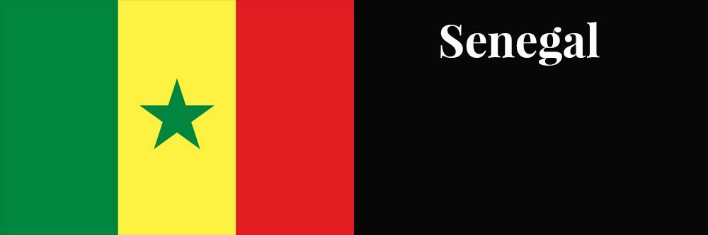 Senegal flag banner1