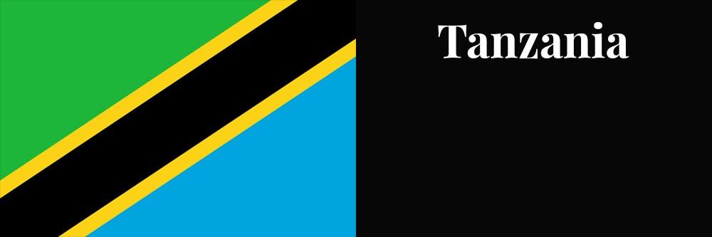 Tanzania flag banner1