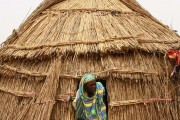 Niger vernacular architecture