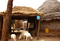 Gambia vernacular architecture