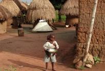 Togo vernacular architecture